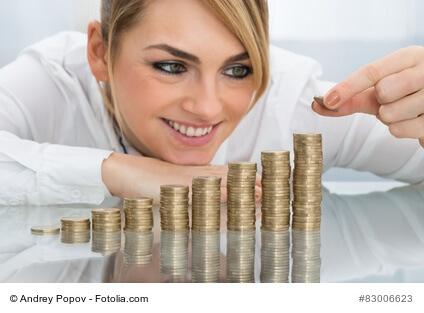 Verdienst Lohnsteuerhilfeverein – wie sieht dieser aus?
